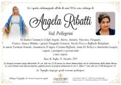 Angela Ribatti