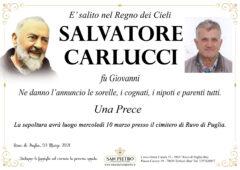 Saverio Carlucci