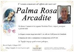 Rosa Palma Arcadite